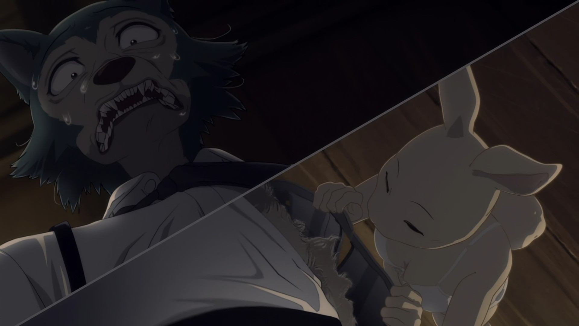 Beastars 03 Lost In Anime